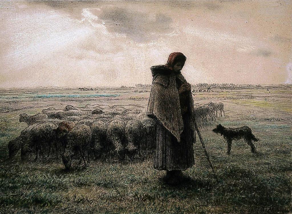 shepherdess-millet