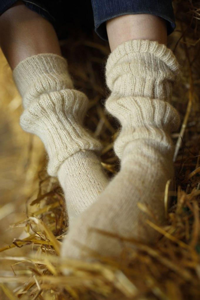 10-socks
