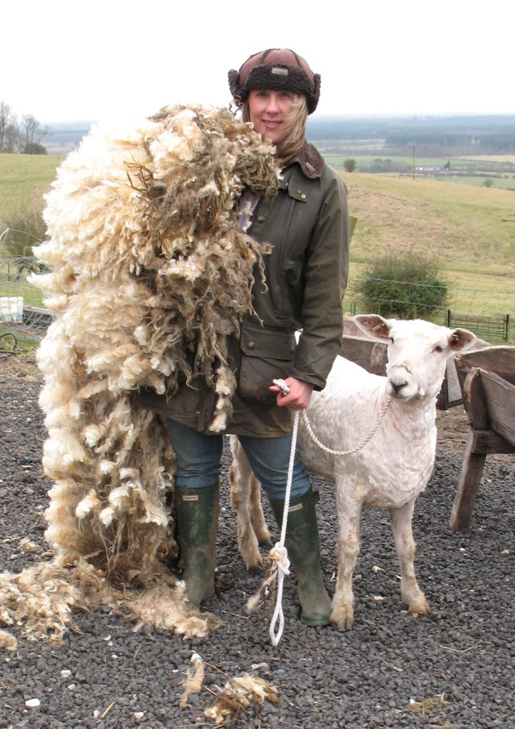 Louise Fairburn, Lincoln Longwool Shepherd