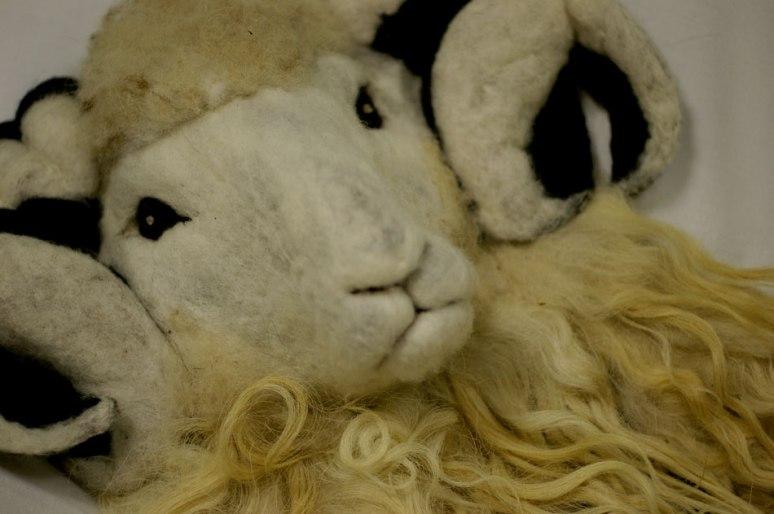 11_Faroe-sheep