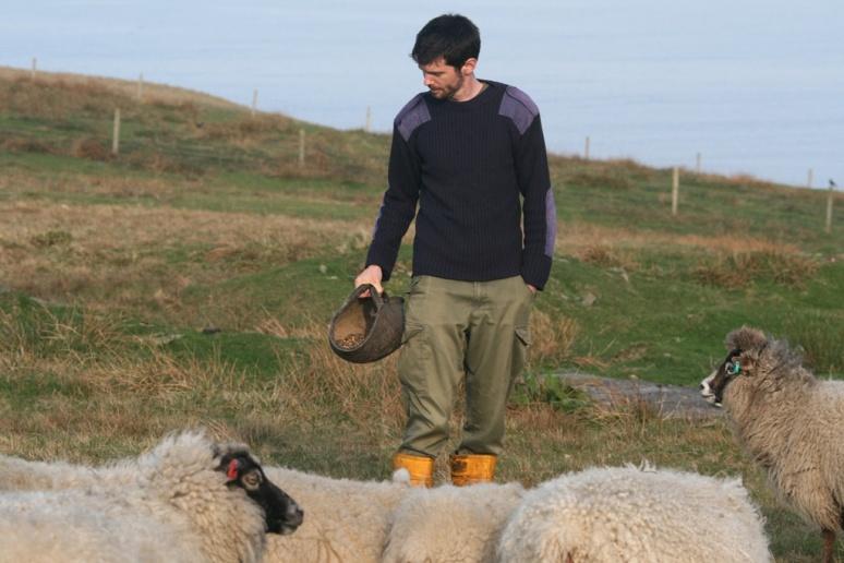 Feeding in advance of lambing