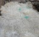 a nice fleece
