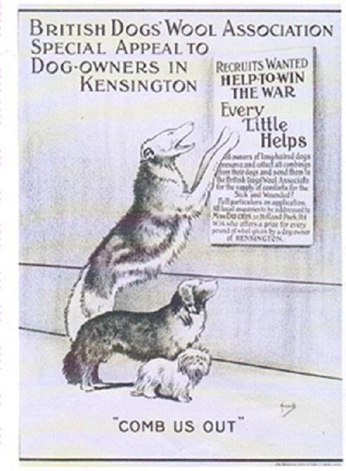 DogPoster - Copy(1)