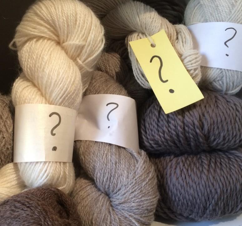 Louise mystery wool1
