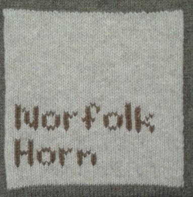 NorfolkHorn