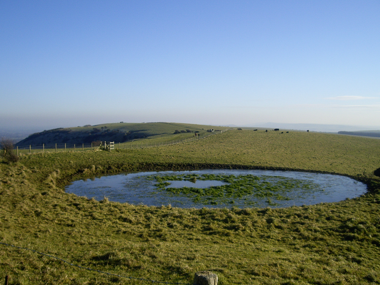 A dew pond near Ditchling, Sussex. (Dew ponds are specially constructed ponds used for watering livestock.)