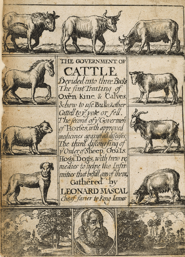 Wovember Words Government Of Cattel First Farm Frontispiece The Cattle Wellcome L0049722 1