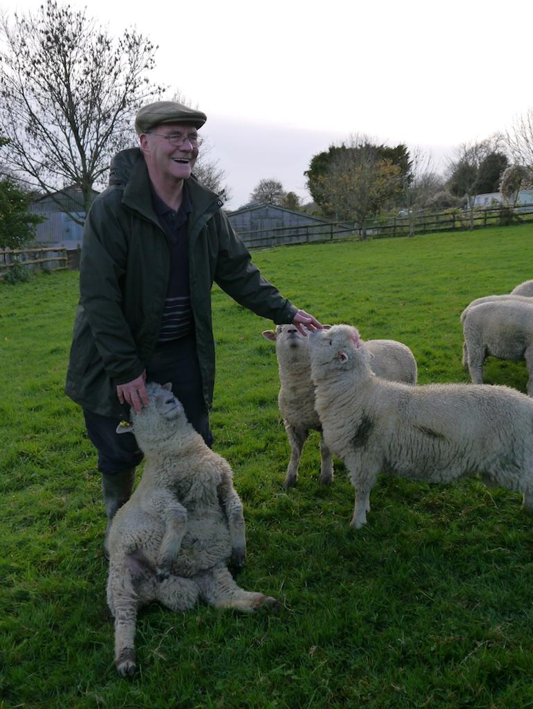 Shepherd Graham Langford and Southdown ram lambs